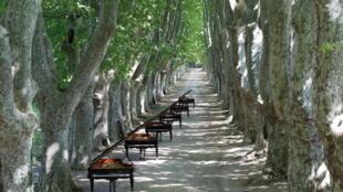 La Roque d'Antheron, près d'Aix-en-Provence, accueille la 38e édition de son Festival international de piano jusqu'au 18 août.