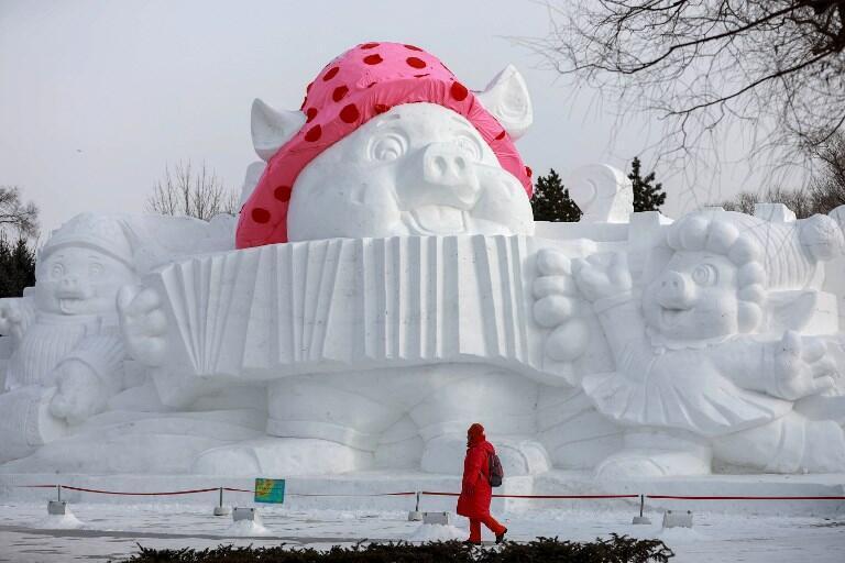 Le cochon sera, en cette année 2019, à l'honneur en République populaire de Chine. Harbin, Heilongjiang, le 4 janvier 2019.