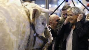 Marine Le Pen au Salon de l'agriculture le 28 février 2017 à Paris.