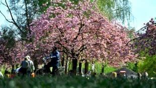 Ảnh minh họa : Vườn hoa Vincennes, nơi thường đón các buổi hòa nhạc cổ điển..