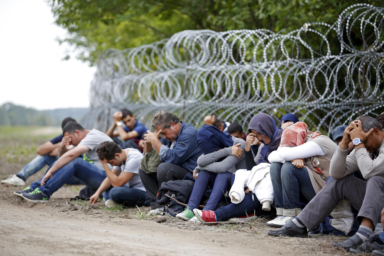 Des migrants détenus par les forces de sécurité hongroises après avoir traversé la clôture de fils barbelés érigée à la frontière entre la Serbie et la Hongrie. Photo datée du 15 septembre 2015.