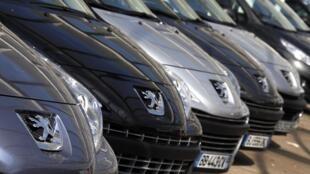 Carros da  Peugeot no pátio da empresa.