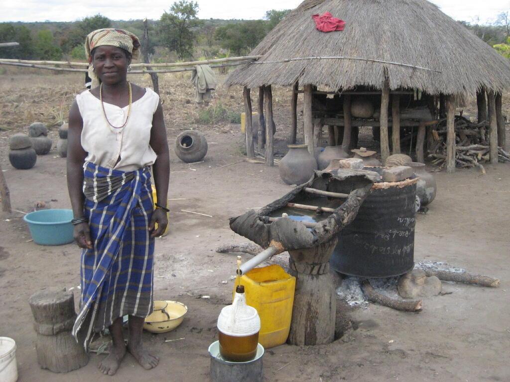 Camponeses vêm as suas terras em perigo, ocupadas por empresas estrangeiras