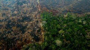 Vue aérienne de l'Amazonie brûlée, non loin de Boca do Acre, dans l'État d'Amazonas, au Brésil, le 24 août 2019.