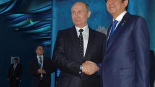 Президент России Владимир Путин и премьер-министр Японии Синдзо Абе в открывшемся океанариуме на острове Русский, 3 сентября 2016 г.