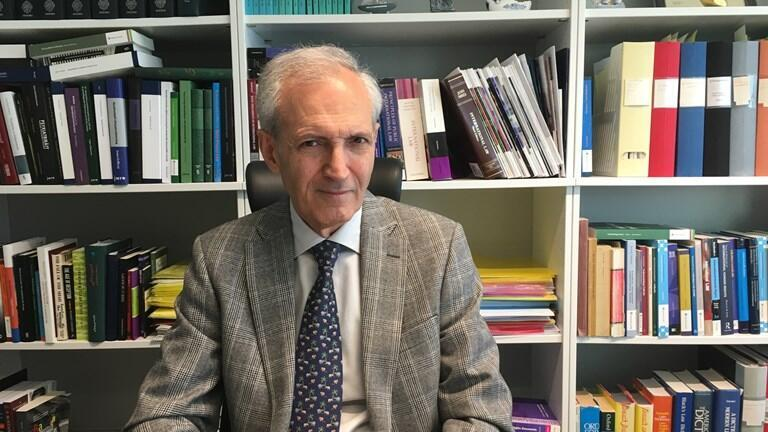 سعید محمودی استاد حقوق بین الملل در دانشگاه استکهلم
