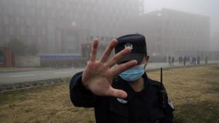 Wuhan - Institut de Virologie - Chine - OMS