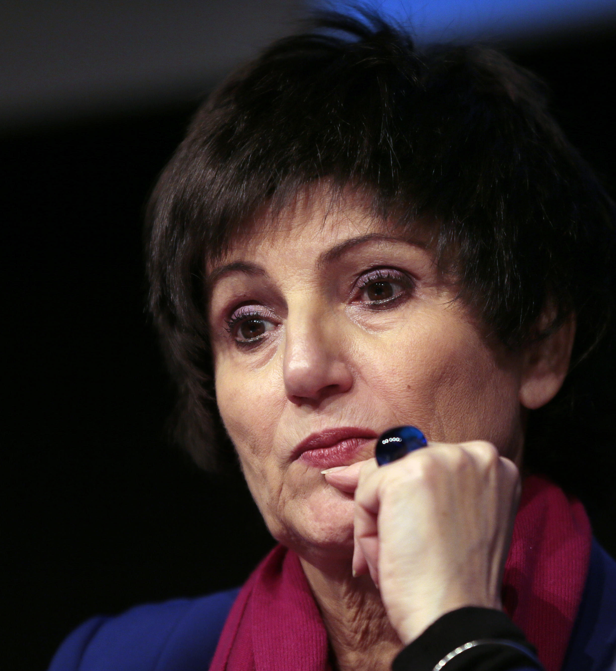 法国政府中负责家庭事务的部长级代表柏提诺蒂女士 巴黎 2013年11月20日