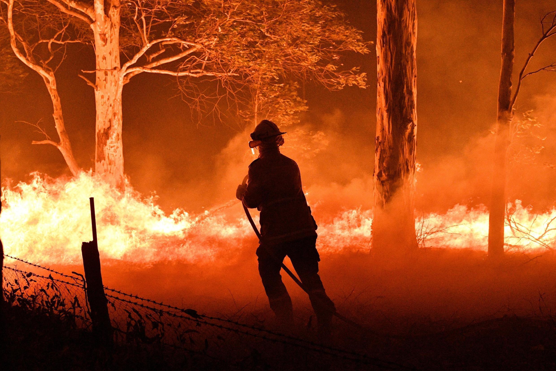 Os incêndios destruiram mais de 8 milhões de hectares de área desde Setembro de 2019 na Austrália.