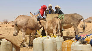 Trois jeunes filles remplissent des bidons d'eau à Amdjarass dans l'Ennedi-Est au Tchad, le 2 avril 2019.
