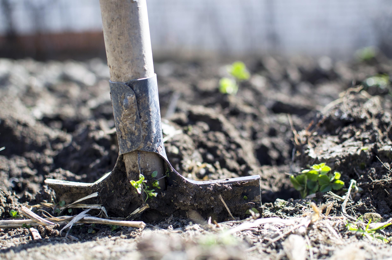 Agriculture - Terre - Pelle - equipment