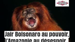 Reprodução da matéria publicada no jornal Libération nesta quarta-feira (31).