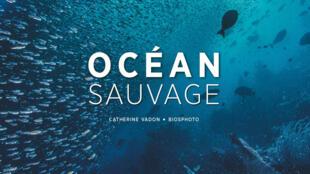 Couverture de l'ouvrage Océan Sauvage (Glénat).