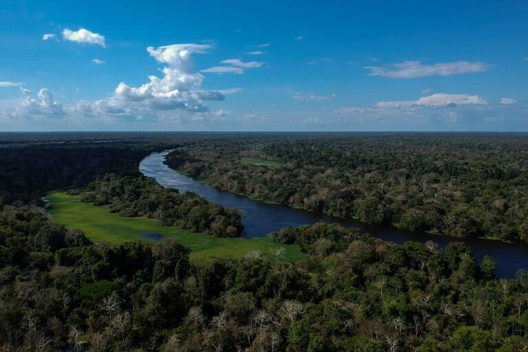 The Amazon lost 20 percent of its surface over 50 years due to massive deforestation.