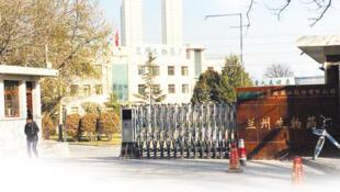 網傳蘭州生物藥廠照片