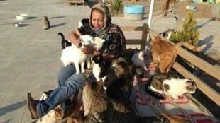 """شعله رئوفی، فعال حقوق حیوانات از ۴ سال پیش """"پناهگاه جانان"""" را در شرق اشتهارد راهاندازی کرد."""