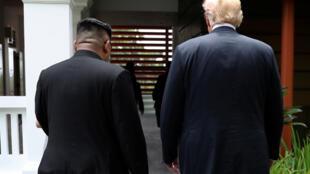 特朗普与金正恩在新加坡峰会期间散步交谈的背影