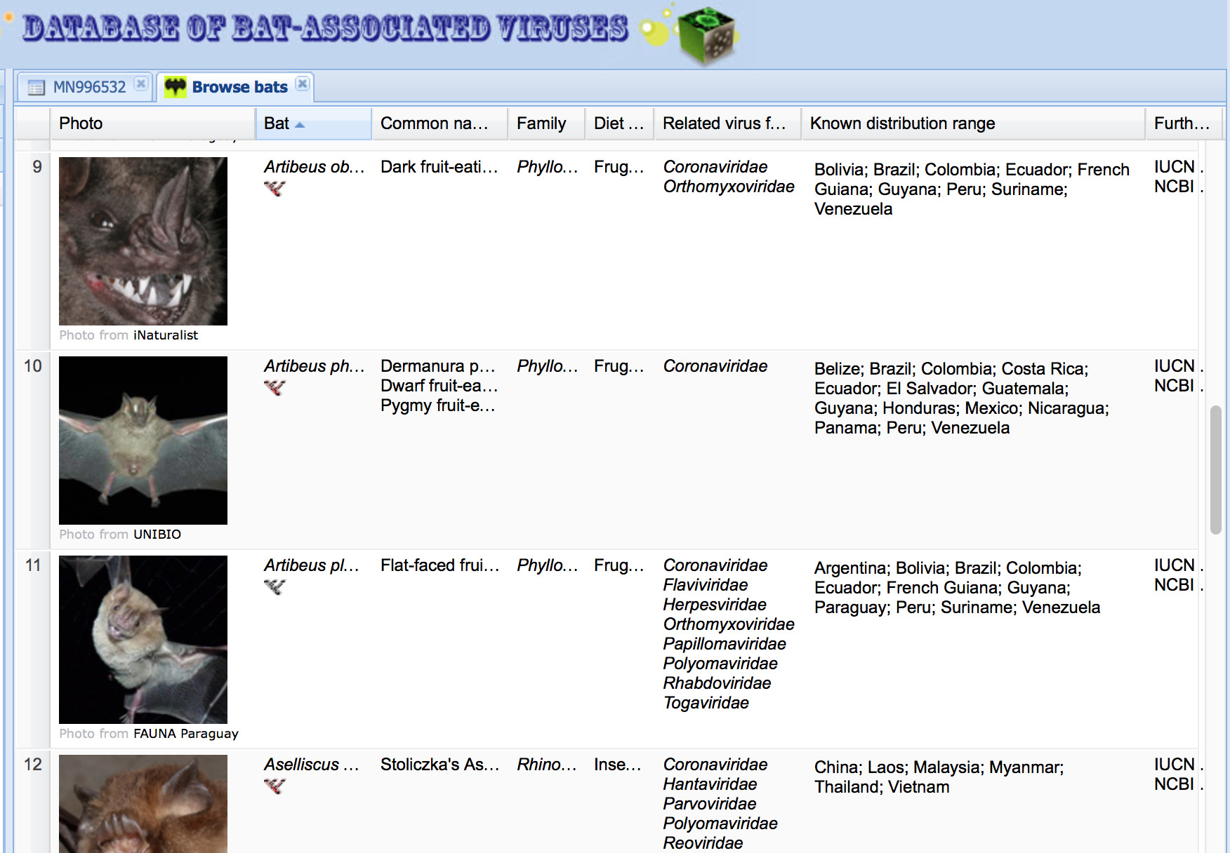 Screengrab bat database Chinese Academy of Medical Sciences. The database contains references to over 12,000 studies of viruses found in bats worldwide.