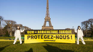 Greenpeace activists demonstrate against genetically modified maize at the Eiffel Tower in Paris, 12 February 2014.