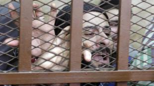استقبال متهمین ازحکم تبرئه دادگاه مصر. ١٢ ژانویه ٢٠١۵