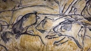 Panel de los leones, al fondo de la gruta Chauvet