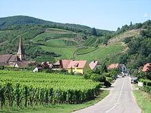 阿爾薩斯葡萄酒之路