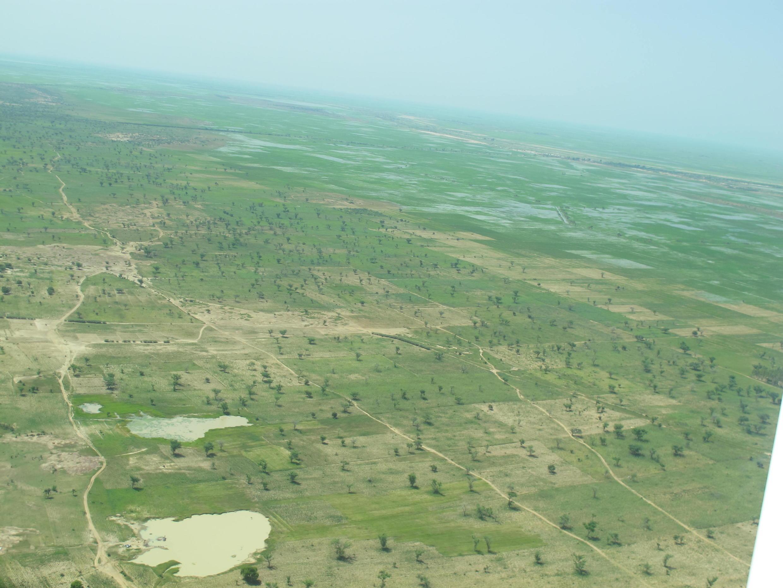 Les rizières de la région de Gao vues du ciel.