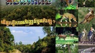 រូបភាពនៃតំបន់អារ៉ែងនៅក្នុងទំព័រហ្វេសប៊ុក We Love Nature