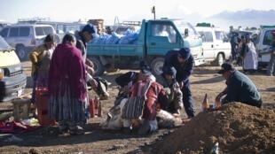 Un lama égorgé et dépecé pour être ensuite enterré. Le sorcier l'a préalablement forcé à ingurgiter des litres de bière pour l'évanouir.