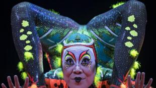 Le Cirque du Soleil sur scène à Paris, le 25 octobre 2018.