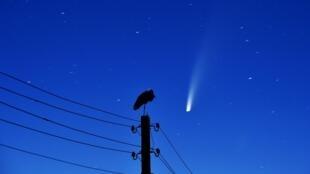 Una cigüeña, posada sobre un poste de la luz mientras el cometa C/2020 F3 (NEOWISE) se ve en el cielo en Kreva, a unos 100 kilómetros al noroeste de Minsk, el 13 de julio de 2020