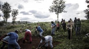 Une famille enterre un proche victime d'Ebola à Butembo, le 16 mai 2019.