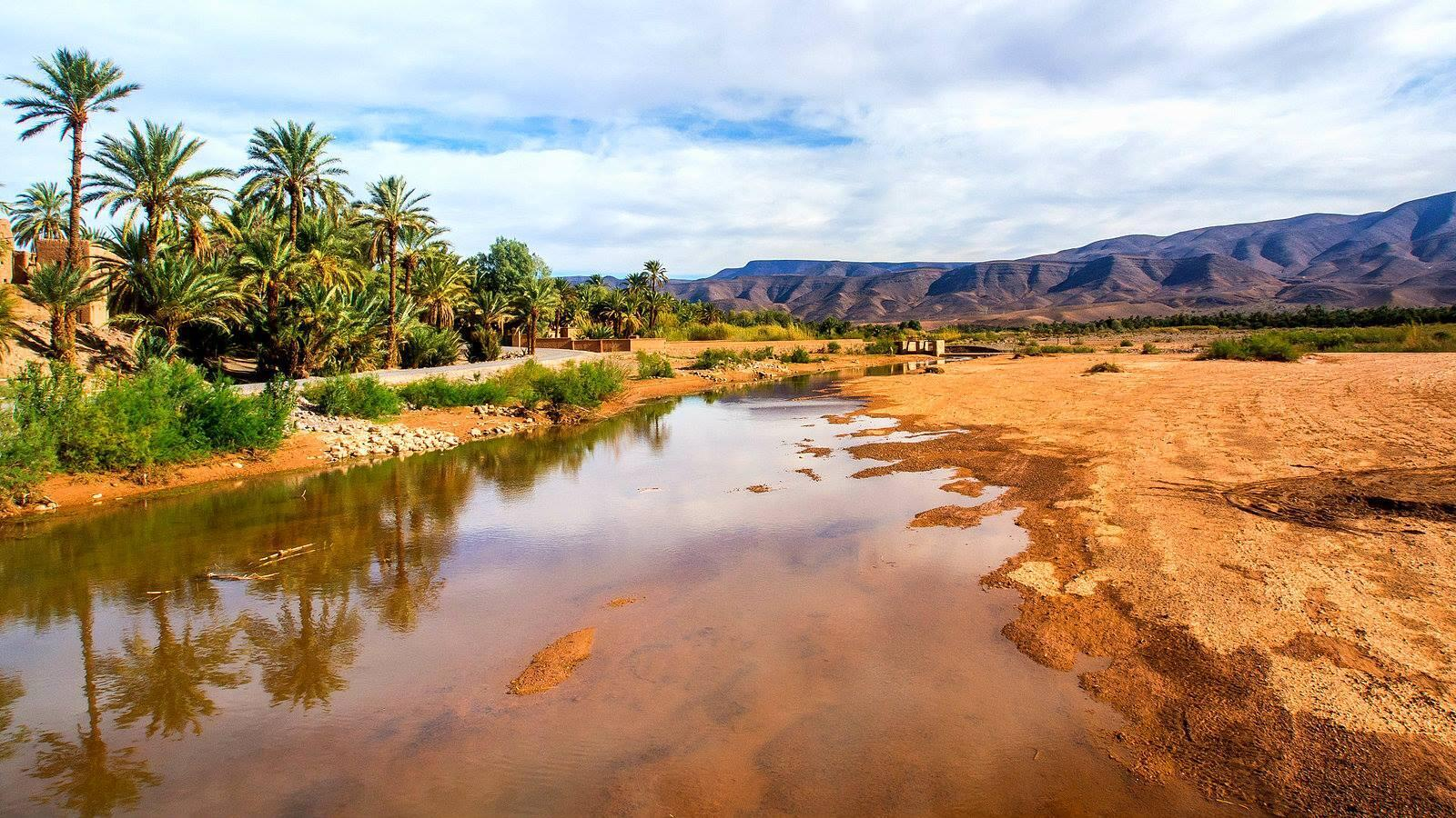 """Tafilalet, world's largest oasis - """"Sustainable Oasis"""" is part of three main initiatives supported by Morocco for #COP22"""