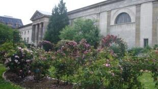 La roseraie avec, en fond, le bâtiment de botanique et géologie au Jardin des Plantes de Paris dans le 5e arrondissement.