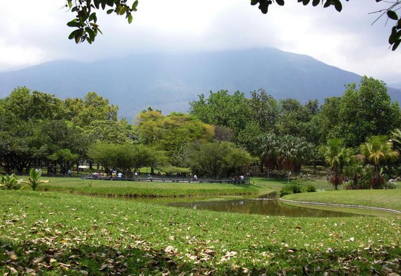 Parque Del Este, pulmão vegetal encravado em meio à selva urbana que é Caracas, a capital venezuelana.