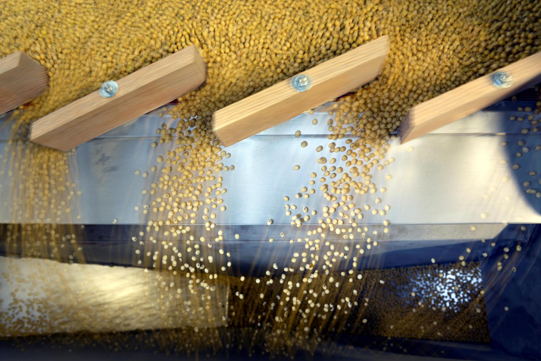 les exportations de soja américain vers la Chine ont chuté de 62% au cours des dix premiers mois de 2018, et ont été nulles en novembre.
