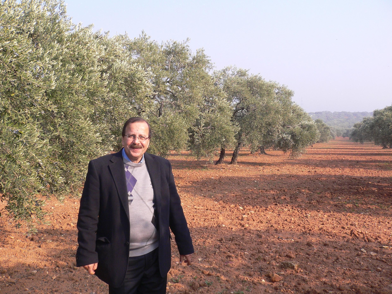 Hassan Harastani, master soapmaker, with his olive trees near Aleppo