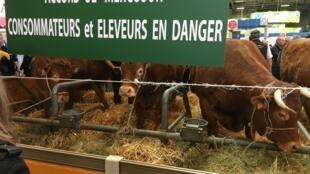 Placas de protesto contra o acordo entre a União Europeia e o Mercosul estão por todos os lados, no Salão da Agricultura em Paris.