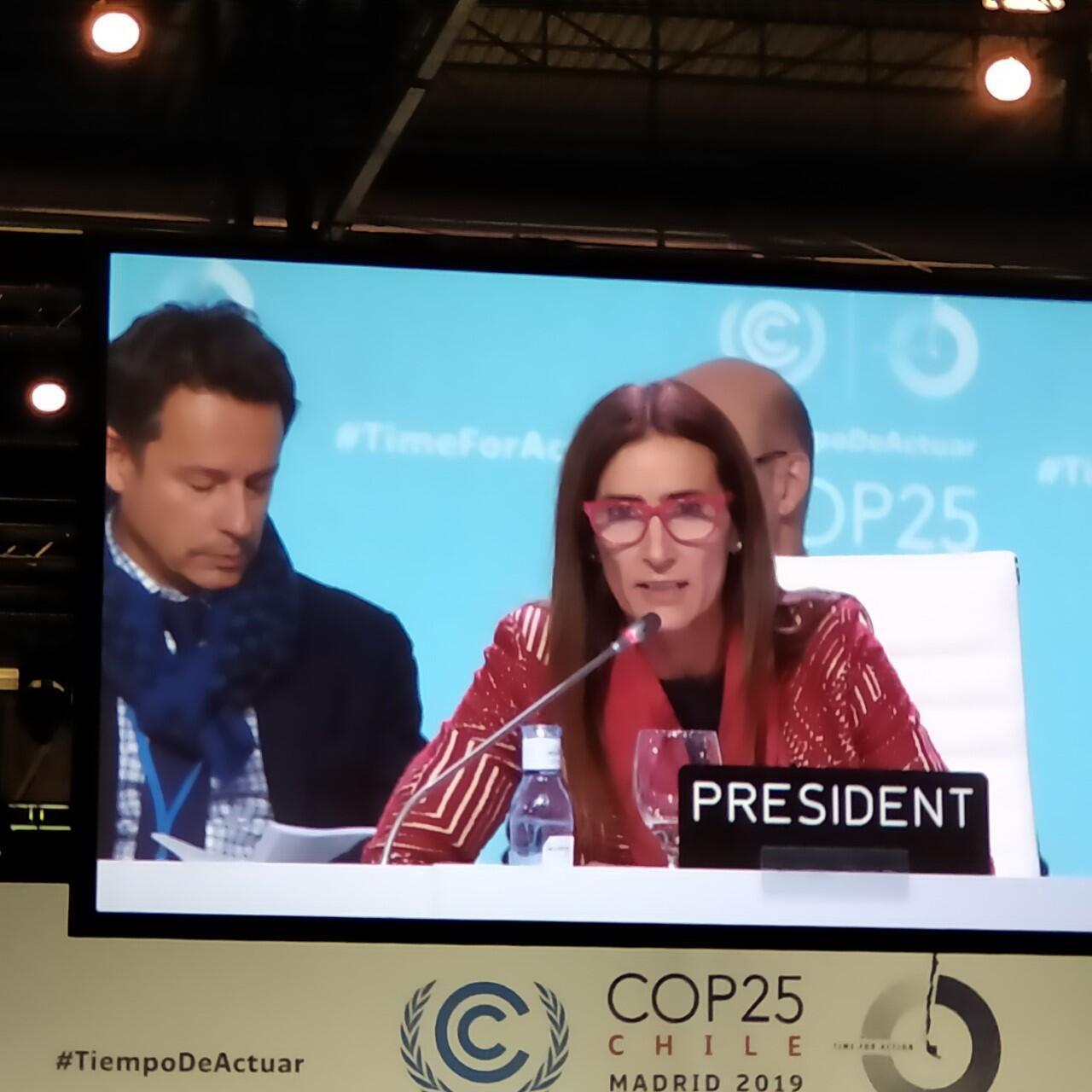 La presidenta de la COP25, Carolina Schmidt, durante la Plenaria de clausura. Madrid, 15 de diciembre de 2019.