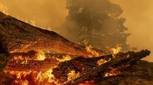 Une vue de l'incendie qui ravage le nord de la ville de Monrovia en Californie le 10 septembre 2020.