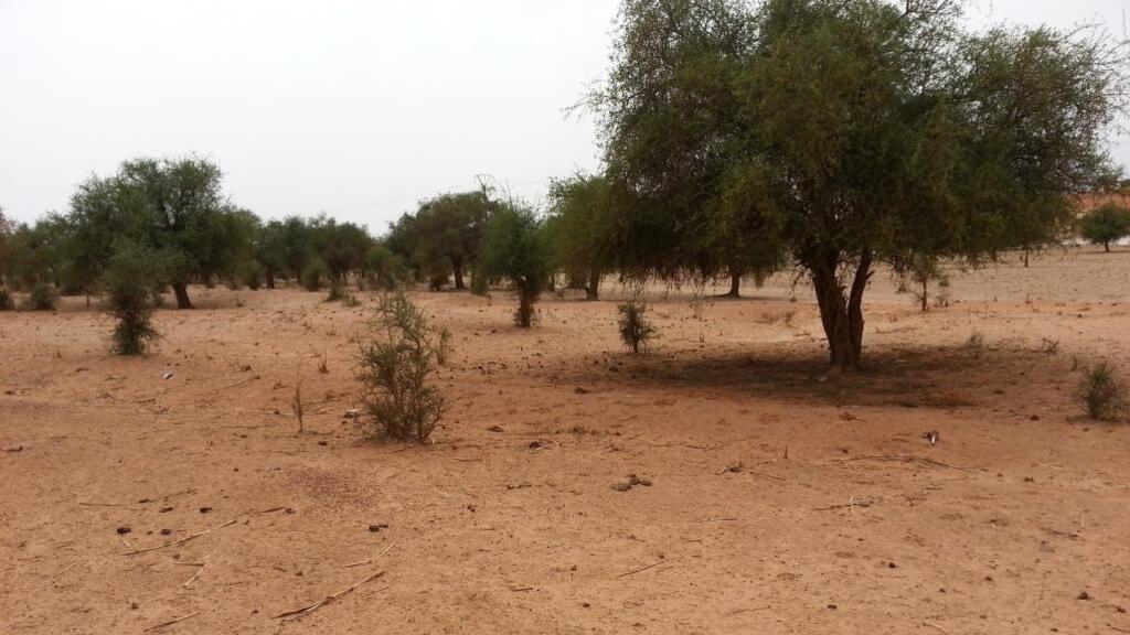 Le Niger ferme un camp de réfugiés infiltré par des jihadistes à la frontière malienne