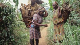 Femmes sur le mont Oku (Cameroun)