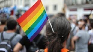 Une personne participant à la Marche des Fiertés à Nantes, le 14 juin 2014, avec le drapeau arc-en-ciel dans les cheveux.