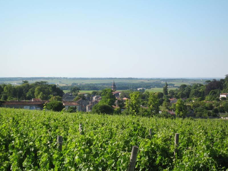 Segonzac, près de Cognac en Charente.
