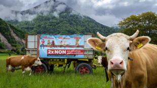Un cartel electoral sobre la prohibición de los pesticidas, en Ollon, Suiza, el 19 de mayo de 2021