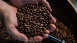 Algunos cafés, como el café Bliss en Medellín, apoyan a los productores independientes, lo que les permite sobrevivir.