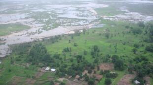 Vue d'une partie de la forêt de Casamance, non loin de Ziguinchor. (Image d'illustration)