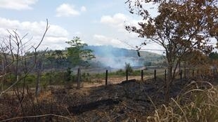 Forest tract next to a large landholder's tract being burned in October in rural Altamira