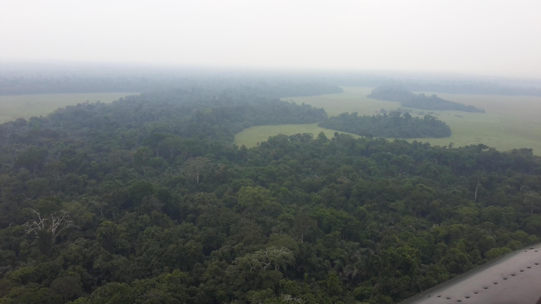 El Congo Brazzaville tiene un gran potencial para desarrollar turismo verde.
