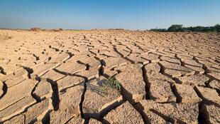 «Le dérèglement climatique a lieu maintenant (...) Il progresse même plus vite que ce que prévoyaient les meilleurs scientifiques mondiaux», a alerté le secrétaire ganéral de l'ONU, le 30 juin à Abou Dhabi.